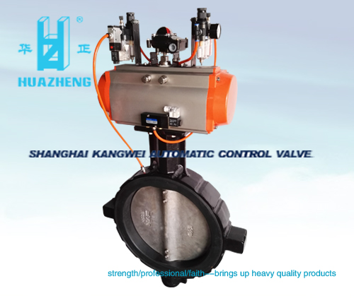 The PZD series of expansion butterfly valves